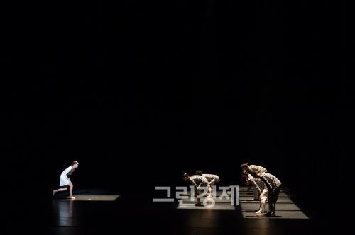 ▲양정수안무의『어떤걸음입니까?비,걸음,2014』