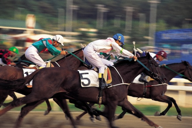 말을 타고 하늘을 날아가는 꿈은 입신출세, 입학, 승진, 당선, 합격, 학위, 자격취득, 승리, 성공, 출장, 여행, 입사, 취직 등의 행운을 상징한다. 자료=글로벌이코노믹